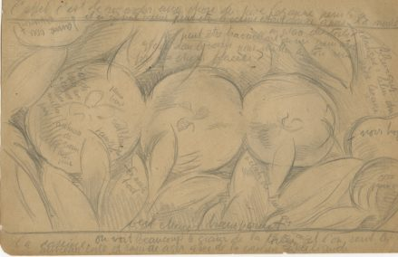 A pencil drawing of three apples and foliage with the artist's notations