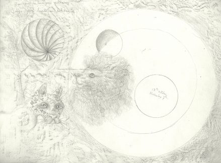 An intricate pencil drawing of a lion's head, a jaguar's head, and spherical forms with the artist's notations.